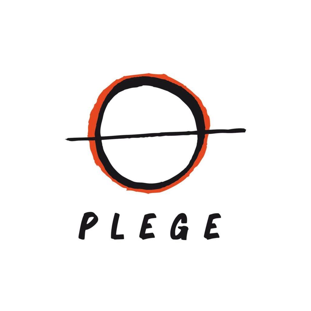 Logo PLEGE